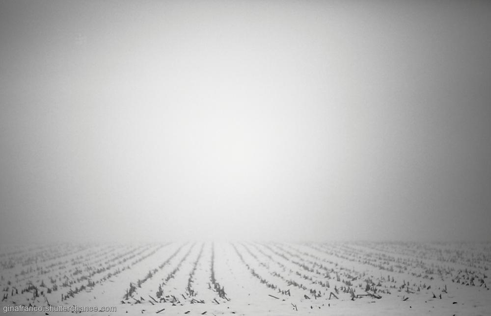 photoblog image first snow, fog